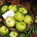 bramley apple (t)