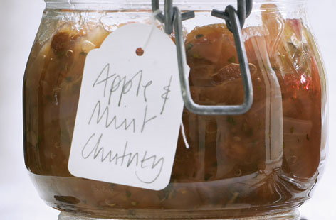 Apple and mint chutney Thumbnail 6b9bee06 1225 441c 9fef 2ccf120bc393 0 146x128