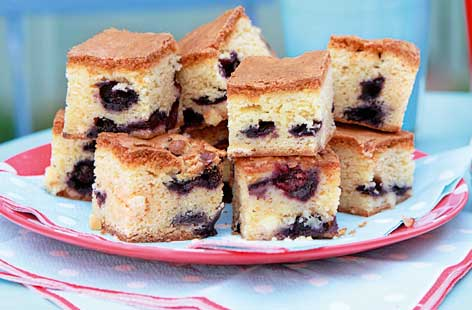 Blueberry and white chocolate squares