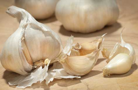 Garlic hero