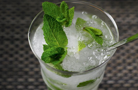 The 10-Second Mojito Recipe — Dishmaps