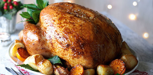 10 best turkey recipes