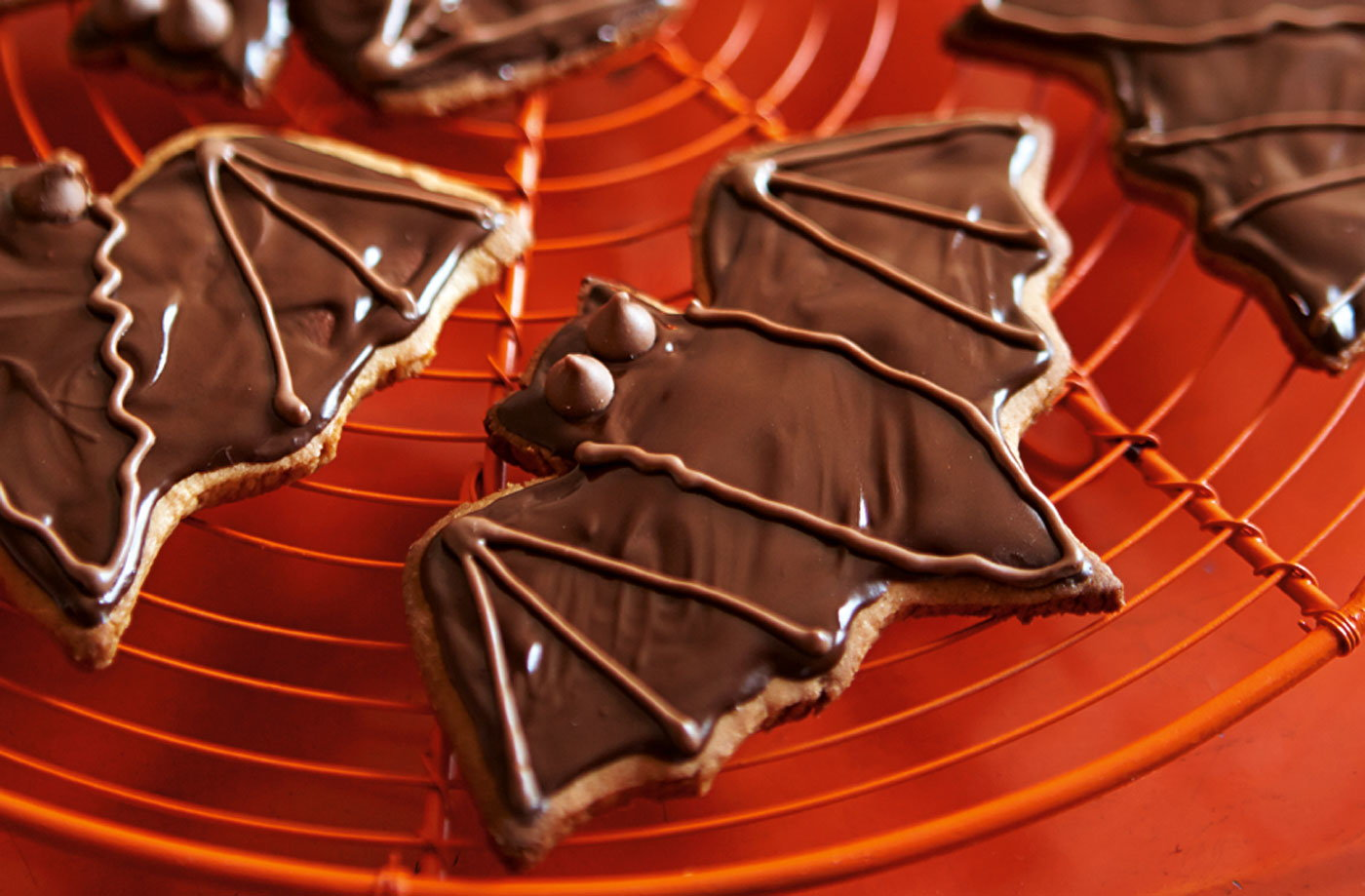 Chocolate Biscuits Tesco Chocolate Ginger Bat Biscuits