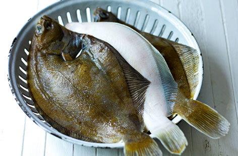 Buying Fish Types Of Fish Tesco Real Food
