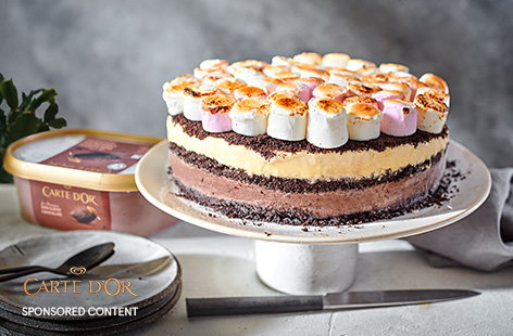End your next barbecue on a high with this impressive s'mores ice cream cake. Inspired by the flavours of a melting s'mores treat, this layers up vanilla and chocolate ice creams with a crunchy Oreo crumb, all topped off with toasted marshmallows.