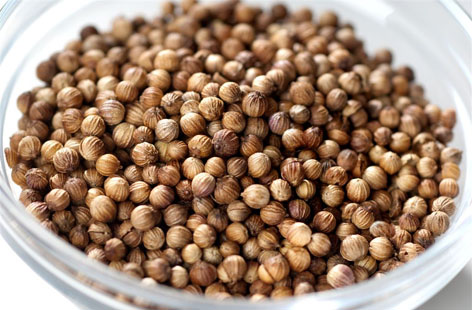 Coriander Seeds hero