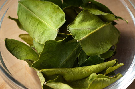 Kaffir Lime Leaves hero