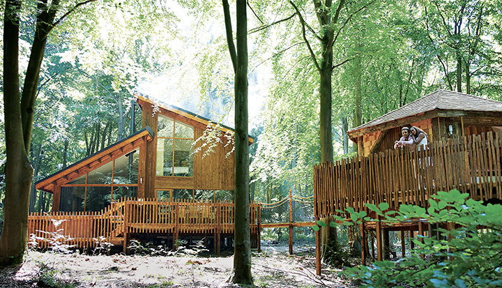 Win a seven-night stay for up to 10 at a Forest Holidays cabin | Tesco Real Food