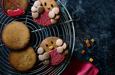 Robin gingerbread biscuits