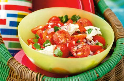 Tomato, mozzarella and mint salad HERO