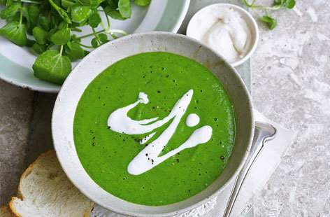 Watercress and pea soup with horseradish cream HERO