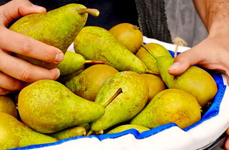 (h)pears provenance TESCO